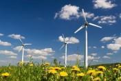 Kupie lub wydzierżawię grunty pod farmę wiatrową