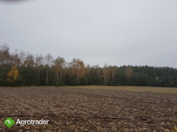 Sprzedam ziemię rolną 3.5 h pod Radomiem (Stromiec)