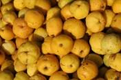 sprzedam owoce pigwowca japońskiego