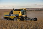 usługi koszenia rzepaku zbóż kukurydzy na ziarno