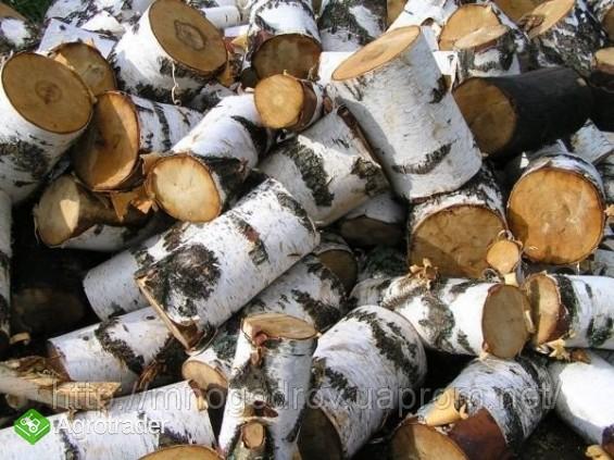 Ukraina.Drewno 15 zl/m3.Produkcja pelletu,wegla. - zdjęcie 1