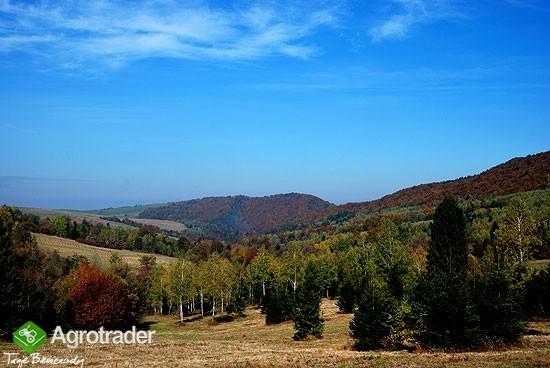 Bieszczady, Solina, 150 ha rolno-leśne - zdjęcie 1