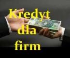 Kredyt dla firm do 500 tys pln