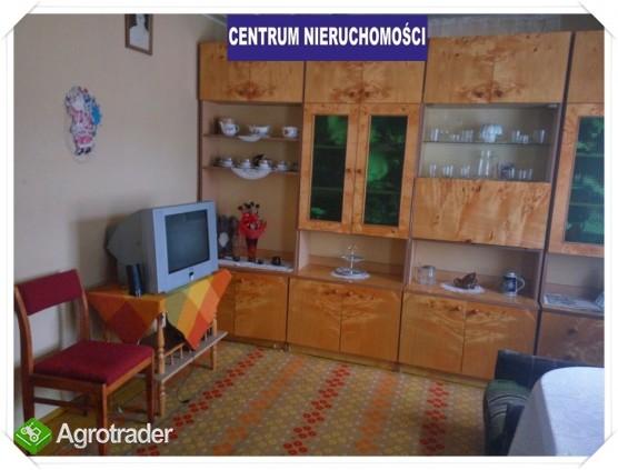 Siedlisko pod Augustowem-nowa atrakcyjna cena - zdjęcie 5
