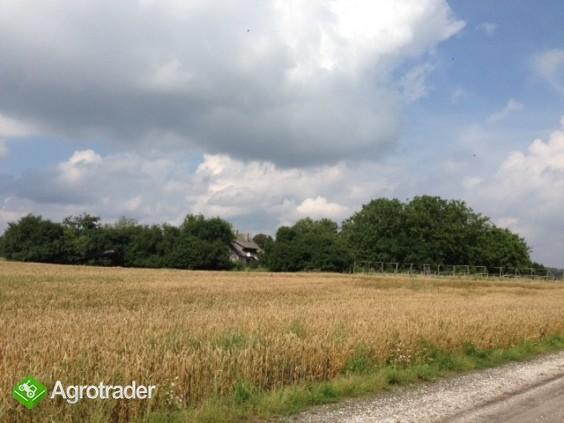gospodarstwo rolne/ogrodnictwo  - zdjęcie 7