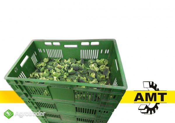 AMT, Maszyna do różyczkowania brokuła, gilotyna, stół  - zdjęcie 1