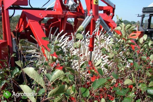 Weremczuk JOANNA TRIPLEX Kombajn do zbioru owoców jagodowych - zdjęcie 2