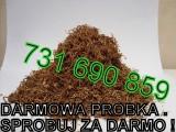 Tytoń Marlboro LM Camel Paramount Viceroy DARMOWE PRÓBKI SPRAWDŹ!