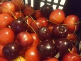 Sprzedam czereśnie - różne odmiany. Czerwone i ciemne.