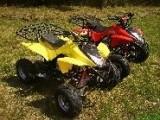 Quad ATV  L-110