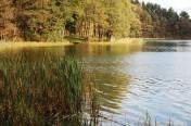 Stare Juchy sprzedam działki 3000m nad jeziorem  Garbas przy lesie.