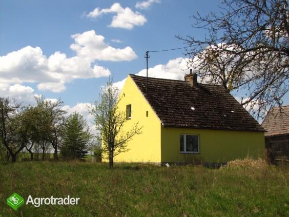 Gospodarstwo Nowe Prusy - cicha przystań, 1.6 ha - zdjęcie 6