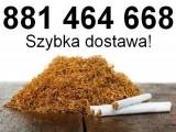 Na sprzedaż tani tytoń do nabijania w gilzy. Szybka dostawa!