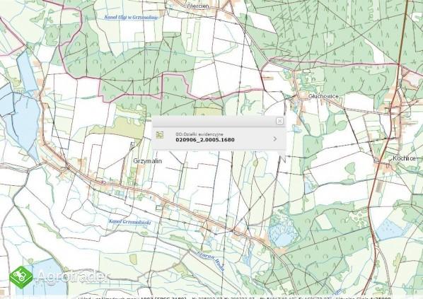 Do sprzedaży grunt rolny o pow. 14,2 ha. Głuchowice. - zdjęcie 1