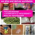 Mefedrona, 4mmc, cocaina, methodrone, DMT, marijuana, borundaga, mdma,