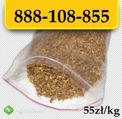 Tytoń papierosowy 55zl/kg Wysyłka 24H! Pewny tytoń prosto z hurtowni!