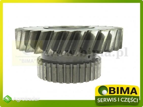 Używane koło zębate tylnego wałka Renault CLAAS 851 - zdjęcie 2