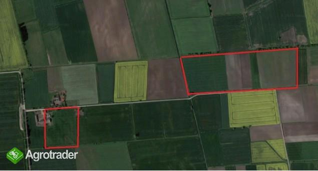 Gospodarstwo rolne gmina Suchy Dąb - zdjęcie 2