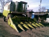 Przystawka do zbioru kukurydzy na ziarno CLAAS