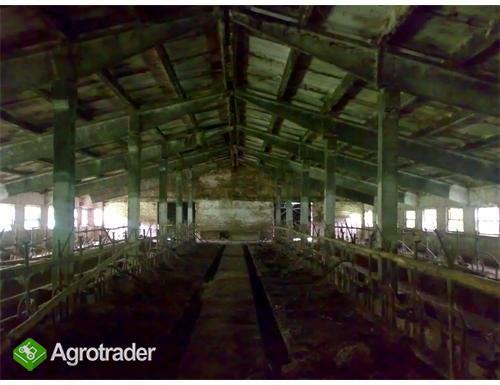 Ukraina.Duze gospodarstwo rolne.Na sprzedaz,wynajm - zdjęcie 1