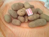 sprzdam ziemniaki jadalne na eksport