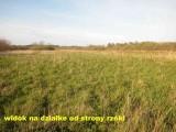oddam ziemie w dzierzawe 14 ha