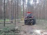Niab Hypro Vimek harwester valmet timberjack