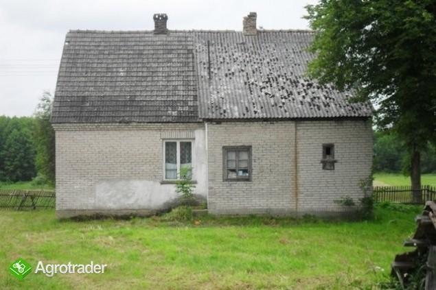Dom z siedliskiem na wsi - zdjęcie 2